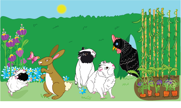 Bertie Guinea Pig stories - Bertie's Friends