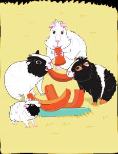 Bertie's Halloween Treat - guinea pig book
